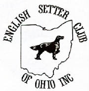ESC of Ohio Logo